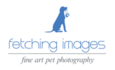 fetching-images-fine-art-pet-photography-logo