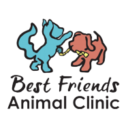 Best Friends Animal Clinic - Hanahan, SC