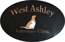West Ashley Vet Clinic - Charleston, SC